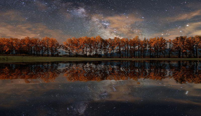 landscape, milky way, nightscape, long exposure, reflections, trees, canon, bulgaria Fantasy Nightphoto preview