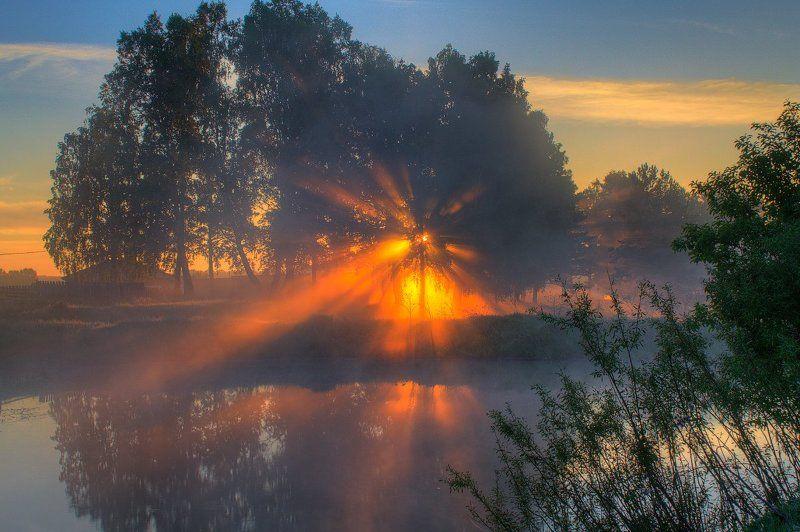 лес, лето, небо, отражение, пейзаж, природа, солнце, туман Пробуждениеphoto preview
