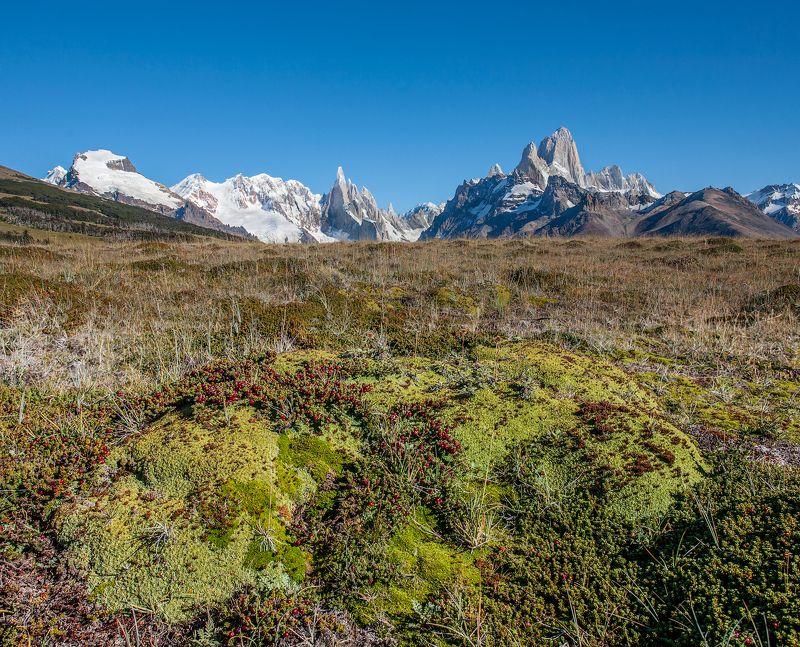 Альпийские луга в Патагонииphoto preview
