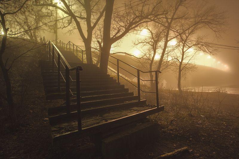 пейзаж,мост,ночь,туман Туманная ночьphoto preview