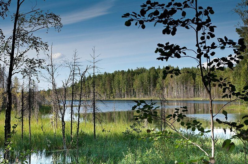 озеро Крестовое Лампиphoto preview
