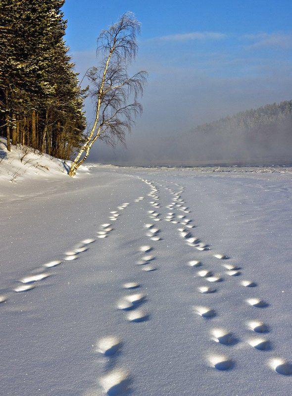 зима,пейзаж,север,река Кто-то прошелphoto preview