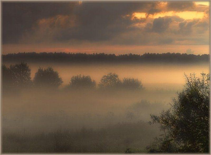 vvs, туман, вечер Летний вечер.photo preview