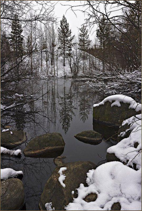 природа,север,зима,пейзаж Пасмурный этюдик теплой зимыphoto preview