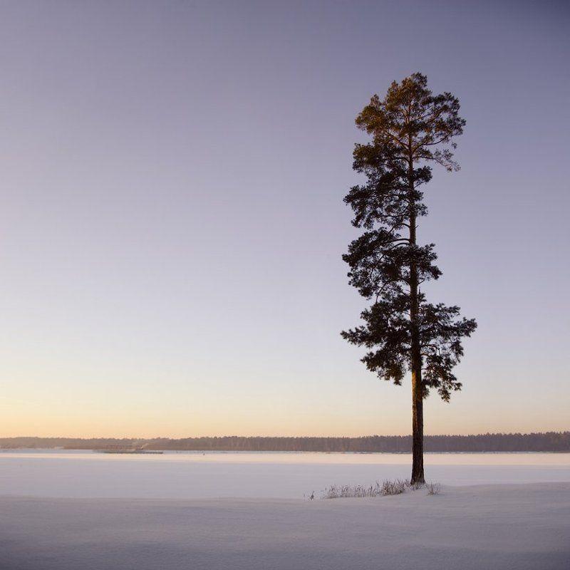 Зимняя зарисовочка №2.photo preview