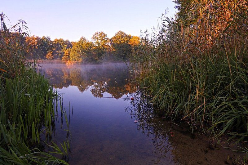 пейзаж,природа,озеро,утро Утро на Камень-озереphoto preview