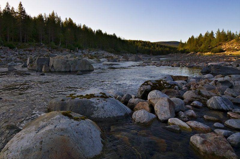пейзаж,лето,север,река На старом русле р.Ниваphoto preview