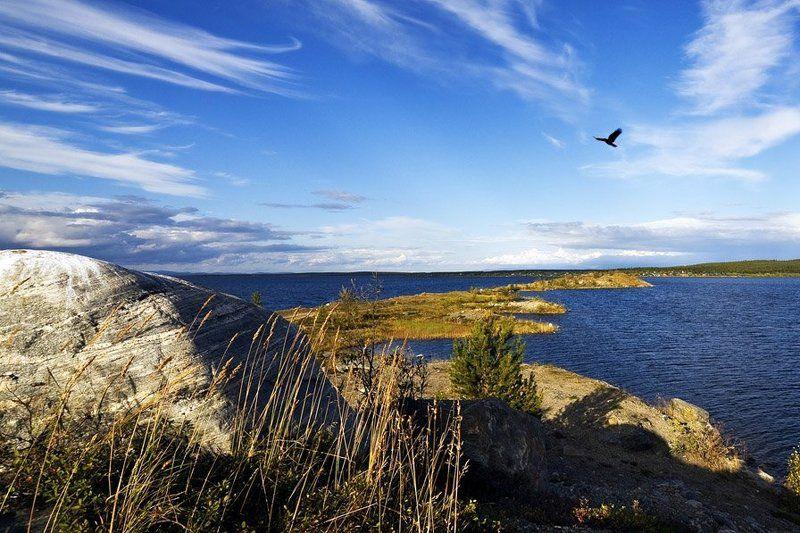 природа,пейзаж,север,лето,озеро На Имандре....Коса на Восточку.photo preview
