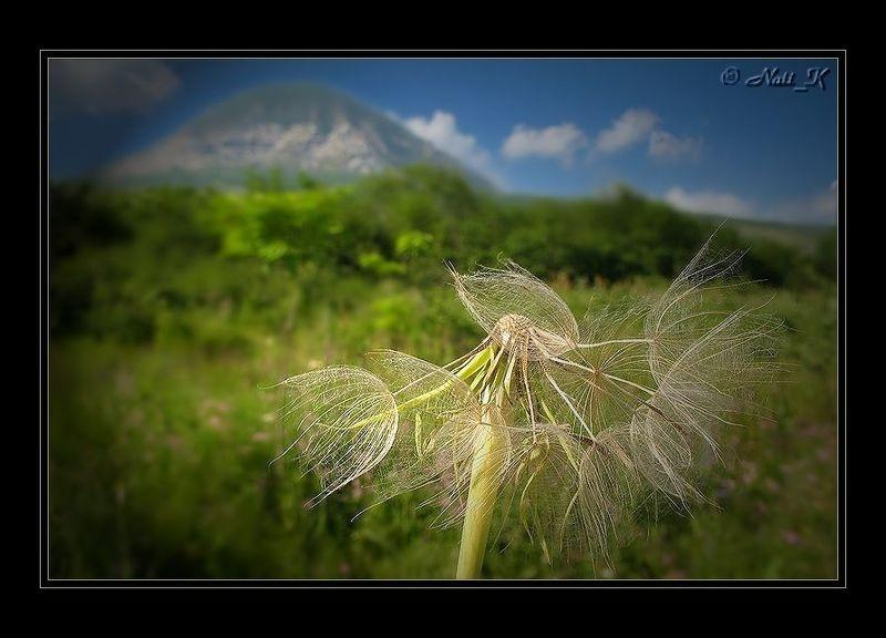 Лето в горах 2photo preview