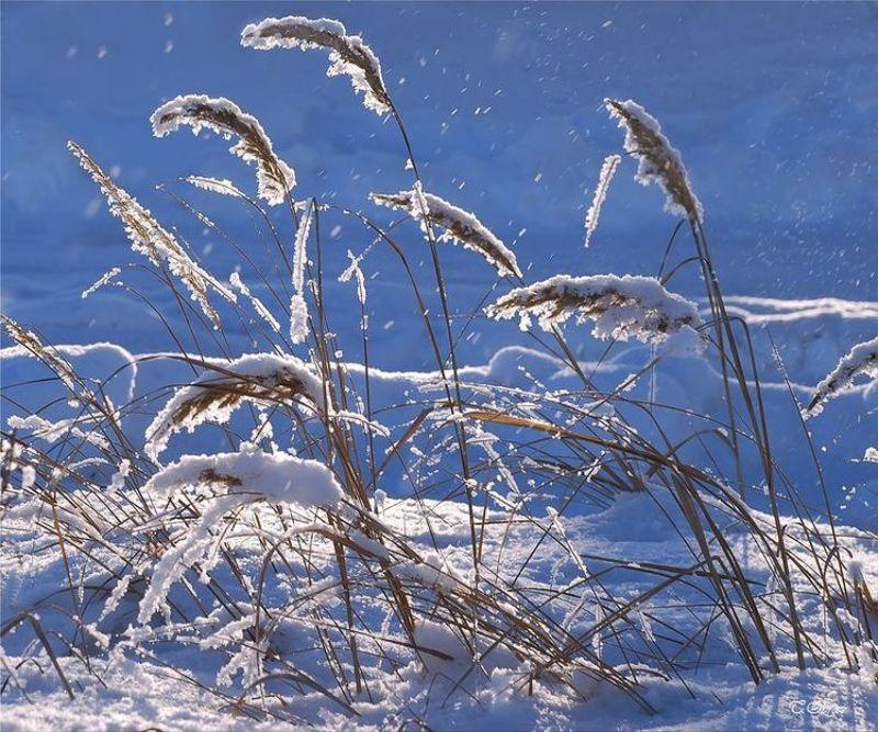 зима photo preview