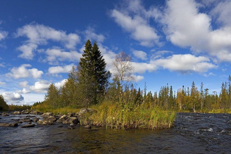 пейзаж,осень,север,река р.Низьма...Осенняя зарисовка.photo preview
