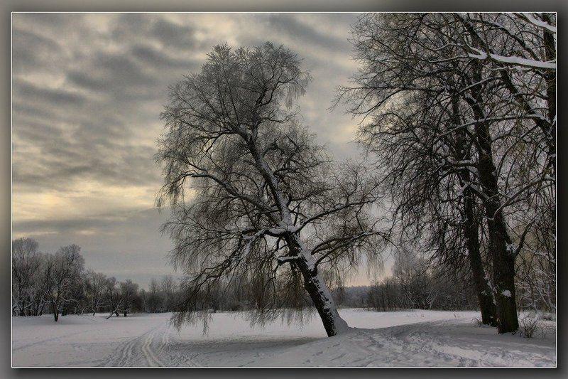 петергоф,чистые пруды,зима,озеро Зимнее озероphoto preview