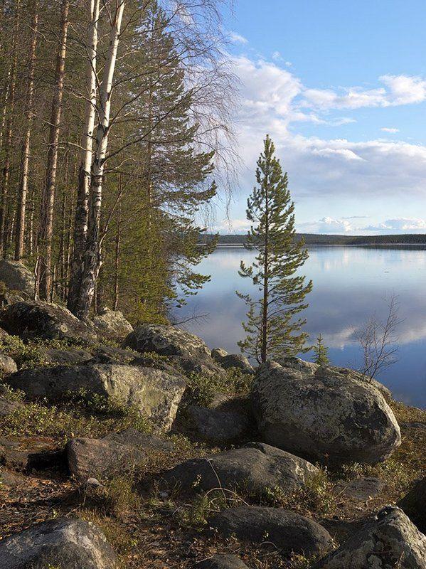 пейзаж,озеро,весна,север Весна на Пинозере...Май.photo preview