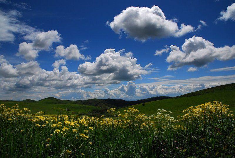 алтай, восточный казахстан Июньphoto preview