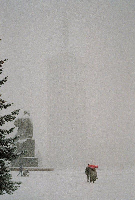 Под снегомphoto preview