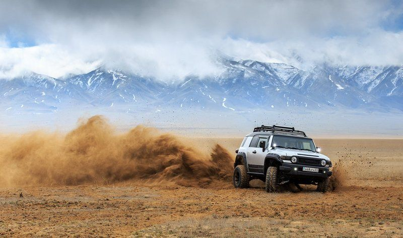 чарын, чарынский каньон, казахстан, алматы, fj cruiser, 4x4, спорт, степь Степное раллиphoto preview