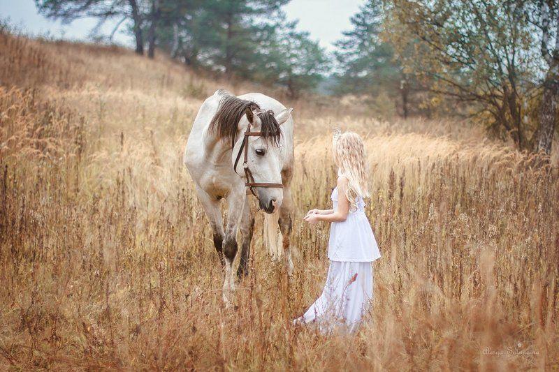 лошадь девочка поле ---photo preview