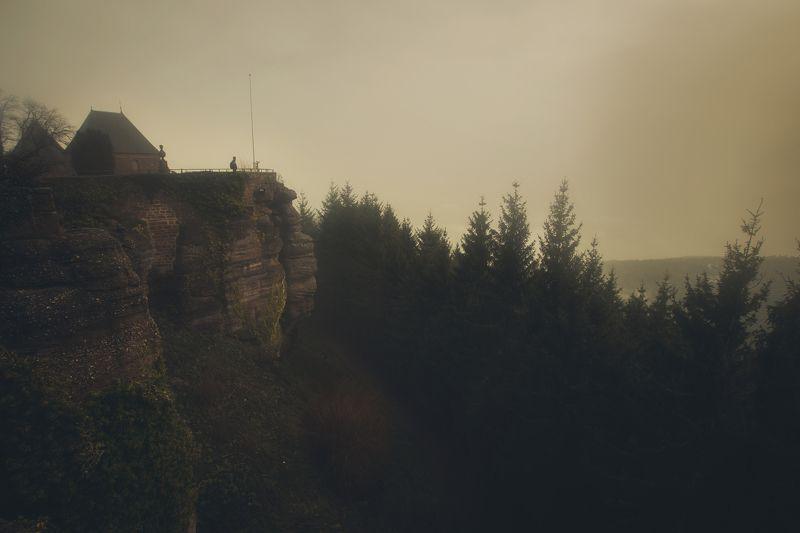 fog morning forest alone france lanscape land silent strasbourg Church otrott Mont-Sainte-Odile Silent Worldphoto preview
