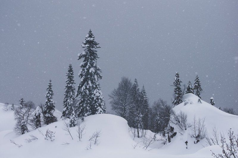 горы, кавказ, зима, снег, mountains, winter, snow Снежное царствоphoto preview
