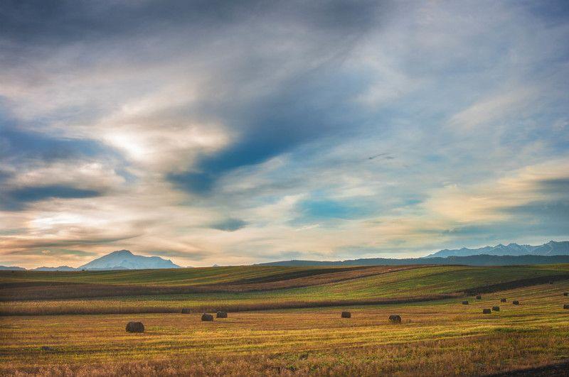 Альпийские луга Кавказаphoto preview