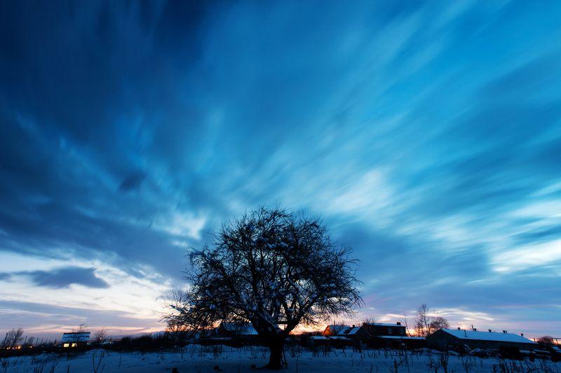 Закат, выдержка, дерево, зима, снег, облака, небо Холодный закат.photo preview