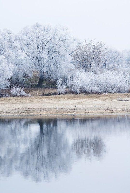 зима, иней, река, берег, дерево, winter, tree Морозное утроphoto preview