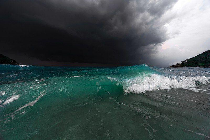 Сиамский заливphoto preview