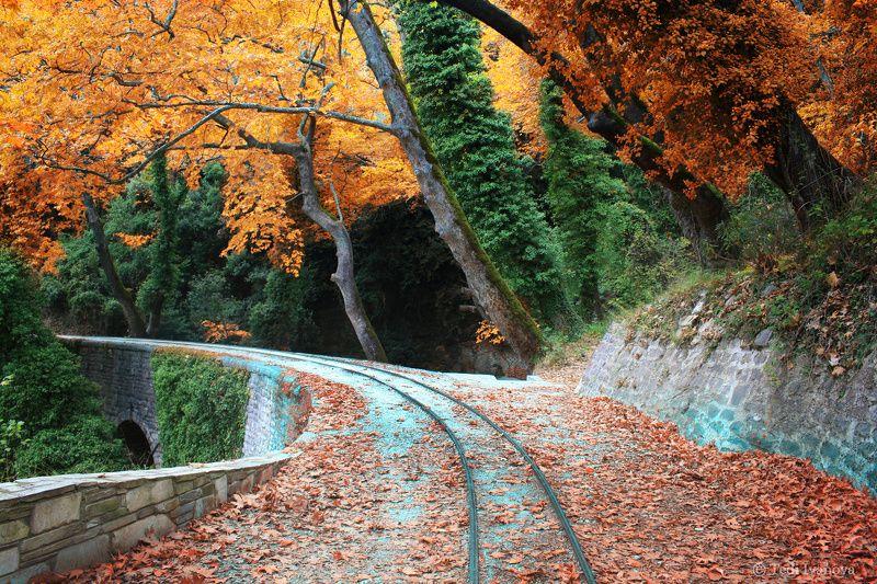 landscape, autumn, Autumn in Pelionphoto preview