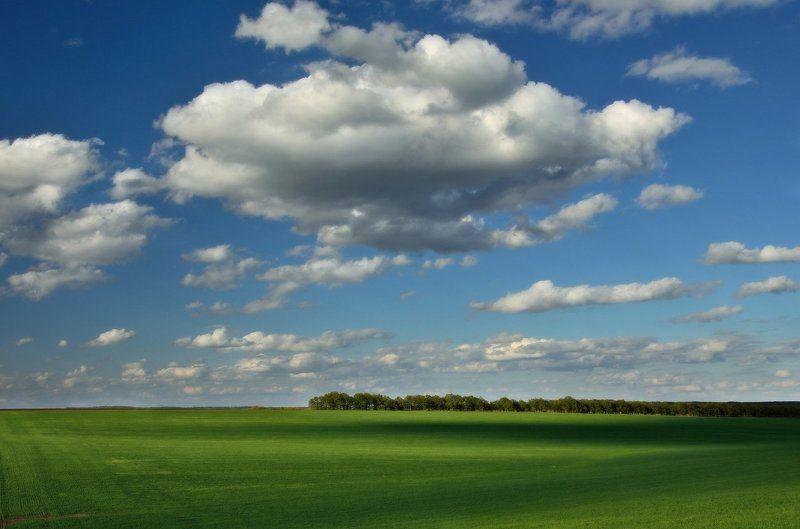 Куда плывут облака?photo preview