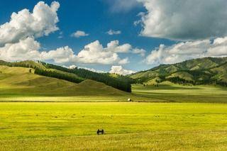 Алтайский простор