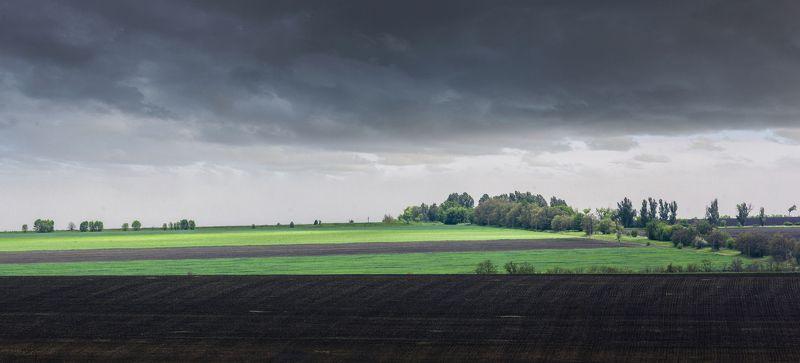Украина, степь, природа, весна, облака, поля, утро,  Геометрия природыphoto preview