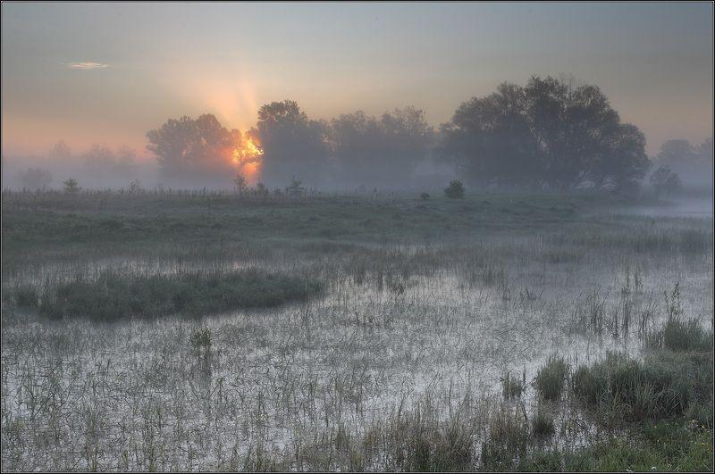 Река Туман Солнце ***photo preview