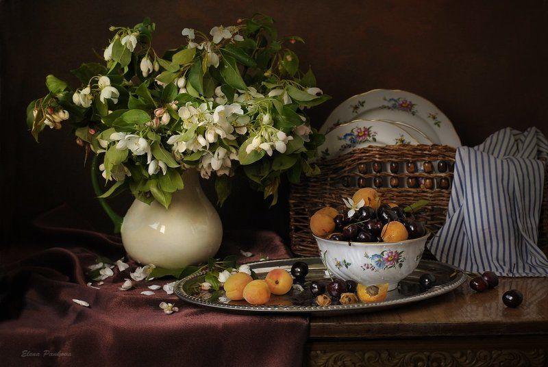 абрикосы, черешня, яблоневый цвет, весна, цветы С абрикосами и черешнейphoto preview