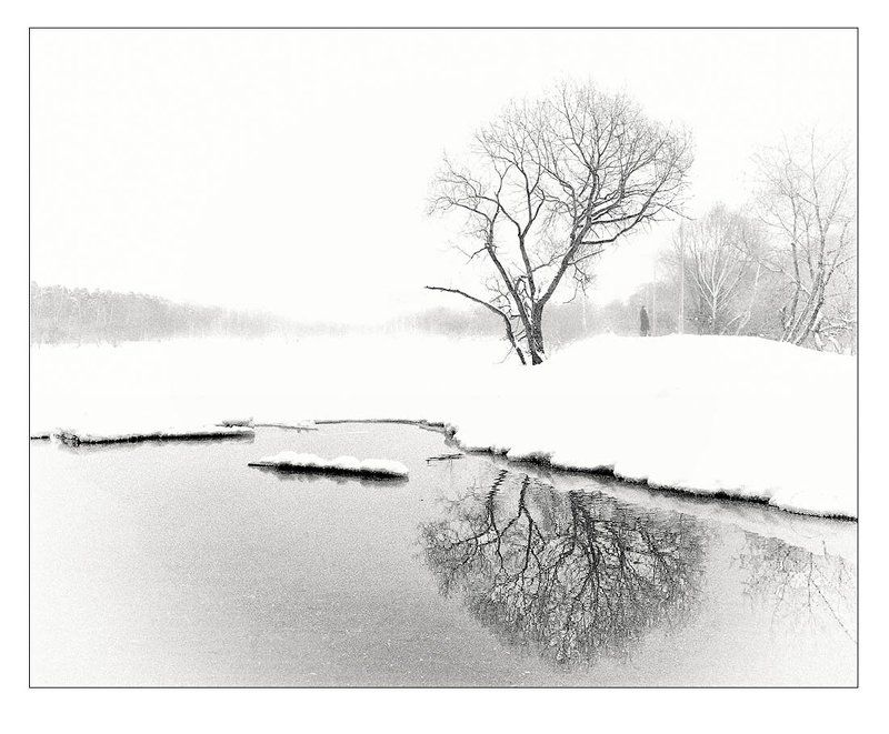 на зимнее дерево сливы будь сердцем своим похожphoto preview