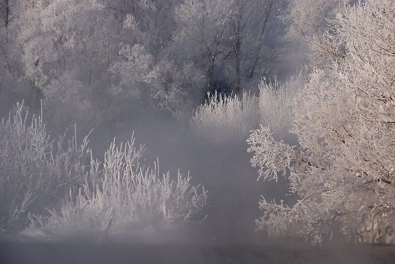иртыш,зима,иней ***photo preview