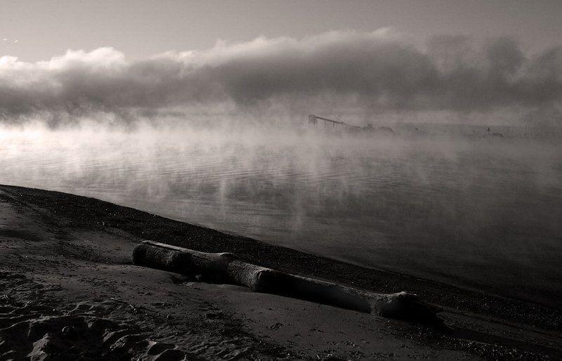 утро туман photo preview