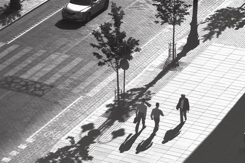 shadows Morning shadows of Vilnaphoto preview