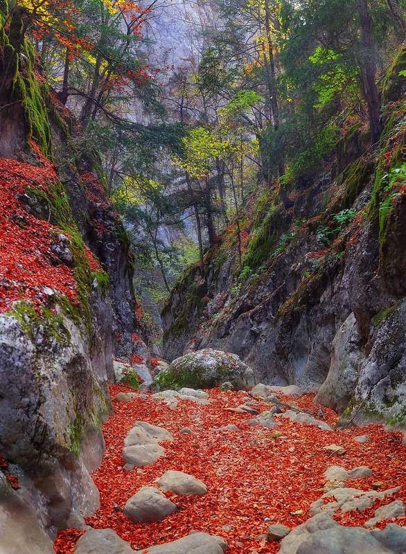 крым, каньон, осень Коридоры большого каньонаphoto preview