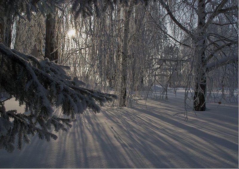 парк,зима,усть-каменогорск В паркеphoto preview