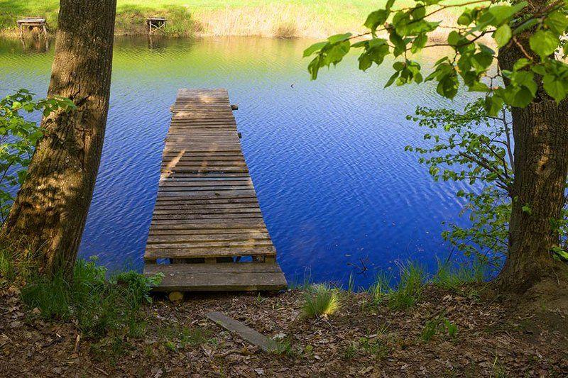 Природа, река, деревья, берег, мостик Мостикphoto preview