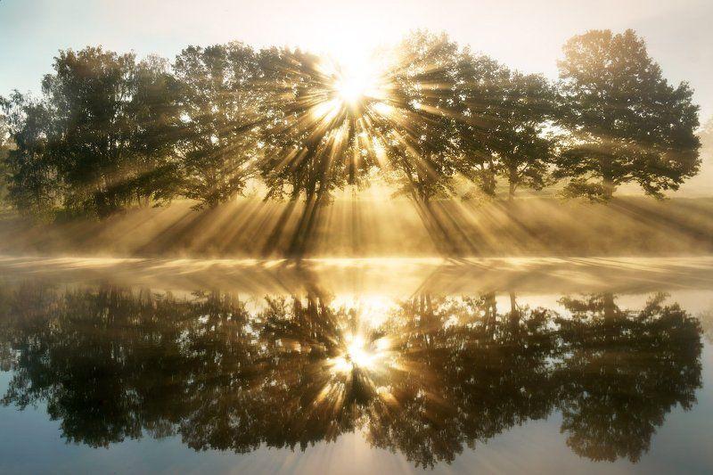 Лучи, Май, Пейзаж, Рассвет, Солнце, Туман, Утро Солнечный взрывphoto preview