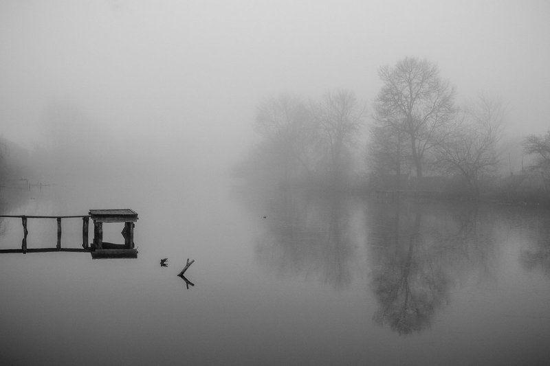 туман мглаphoto preview