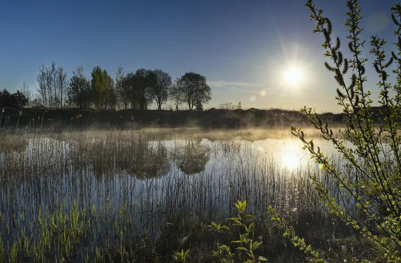 весна, рассвет, утро, пруд утренний прудикphoto preview