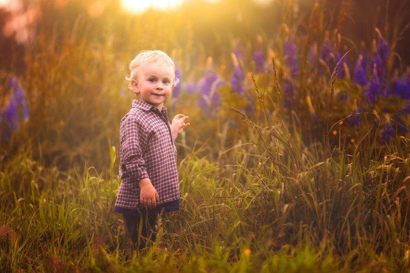 child, children, portrait, boy, nature, grass, meadow, flowers, sun ***photo preview