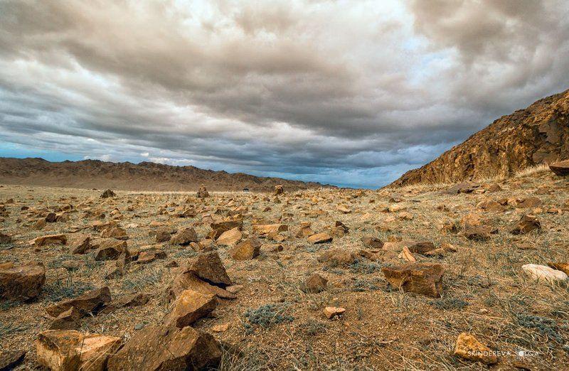 Монголия Бесчеловечный мир Монголииphoto preview