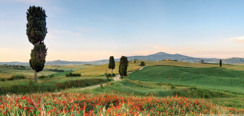 italy, tuscany, nature, landscape Orcia valley. Tuscany.photo preview
