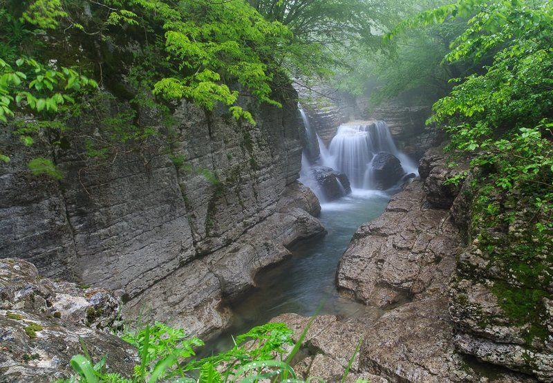 Грузия, ручей, дымка Горный ручей в Грузииphoto preview