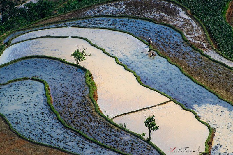 Hoang Su Phi in Mayphoto preview