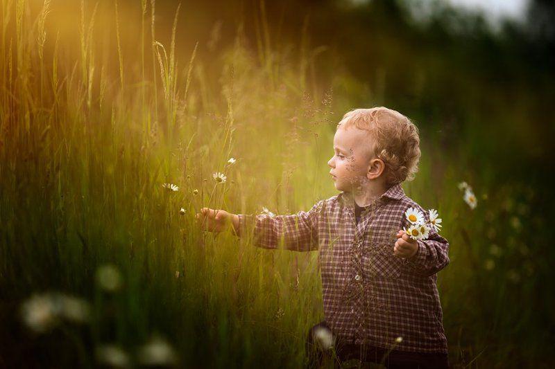 child, children, portrait, boy, nature, grass, meadow, flowers, sun Flowers for motherphoto preview
