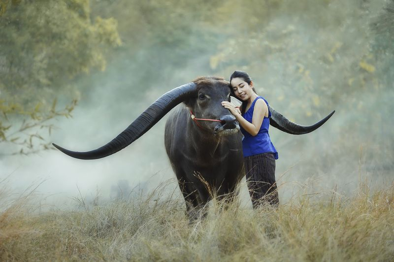Asia, Asian, Bearfoot, Beautiful, Buffalo, Fashion, Thai, Woman Moodphoto preview